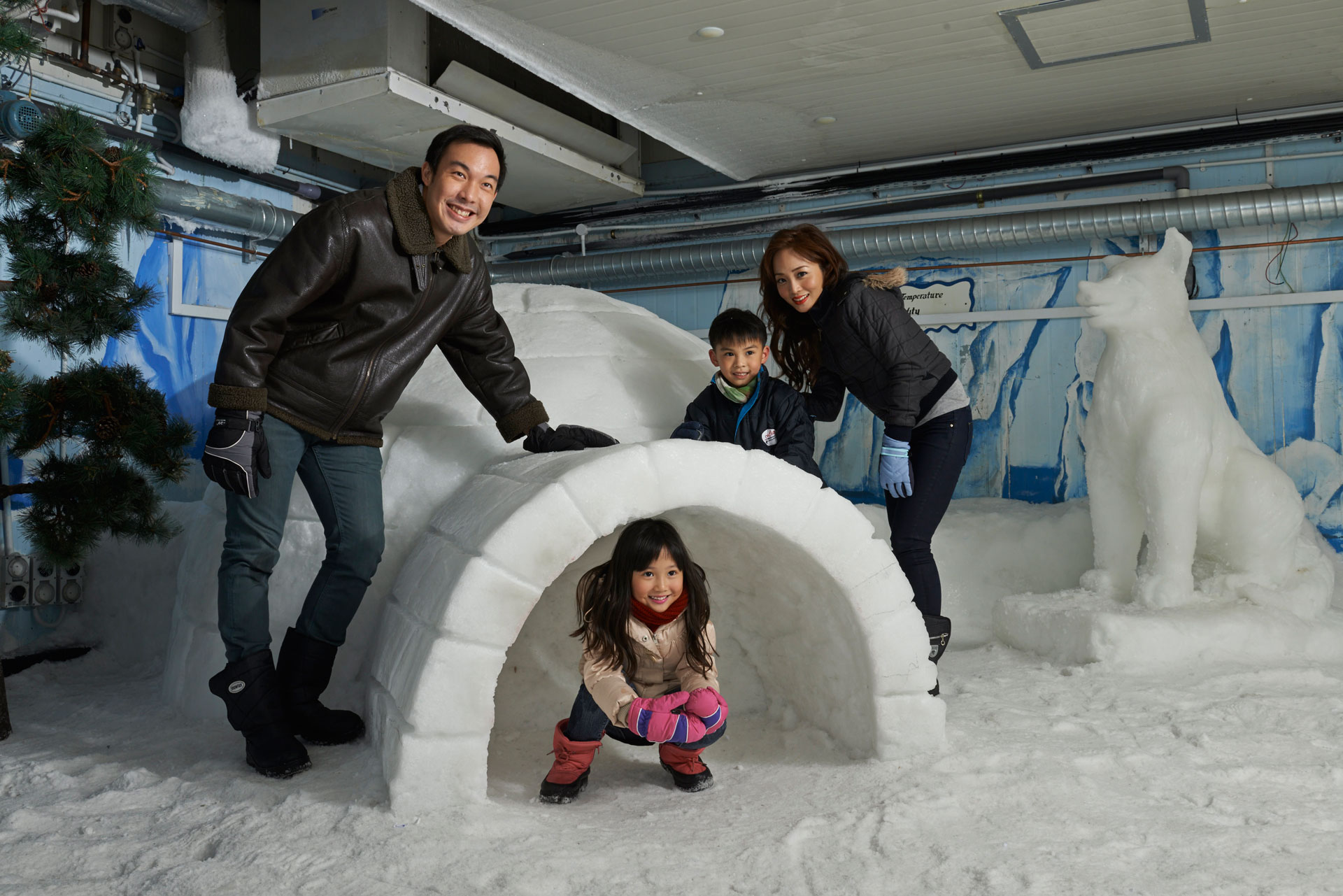Snow-Playground-Igloo